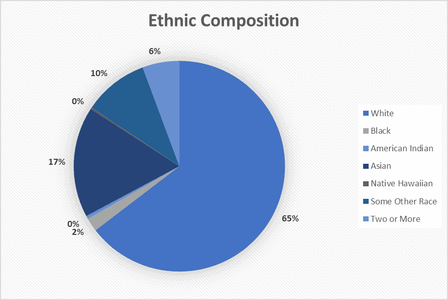 Ethnic Composition 2019
